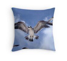 SeaGull Posse Throw Pillow