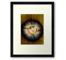 Power Flower Power Framed Print