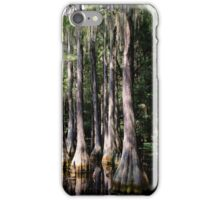Florida Beauty 3 iPhone Case/Skin