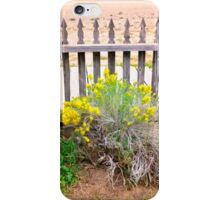 Behind The Picket Fence iPhone Case/Skin