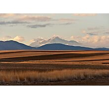 Wheat Fields and Longs Peak Photographic Print