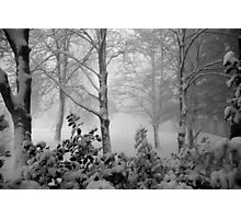 We got snow today!  Photographic Print