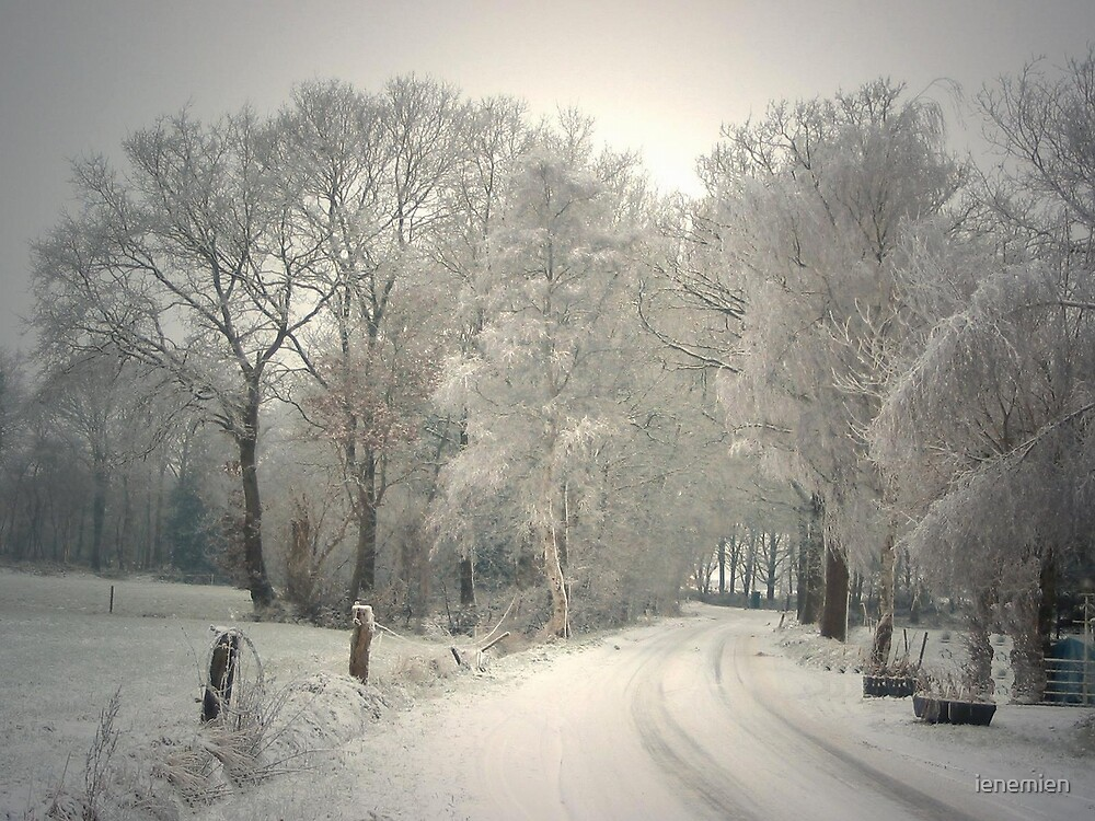 A Winter's Tale by ienemien
