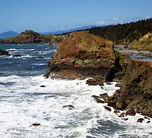 Otter Point View by Trixi Huish