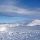 Ski Paradise by Braedene
