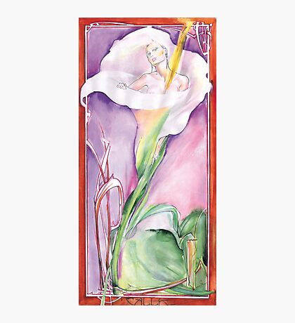 Calla Photographic Print