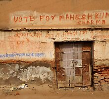 Vote for Mahesh by Catherine Ames