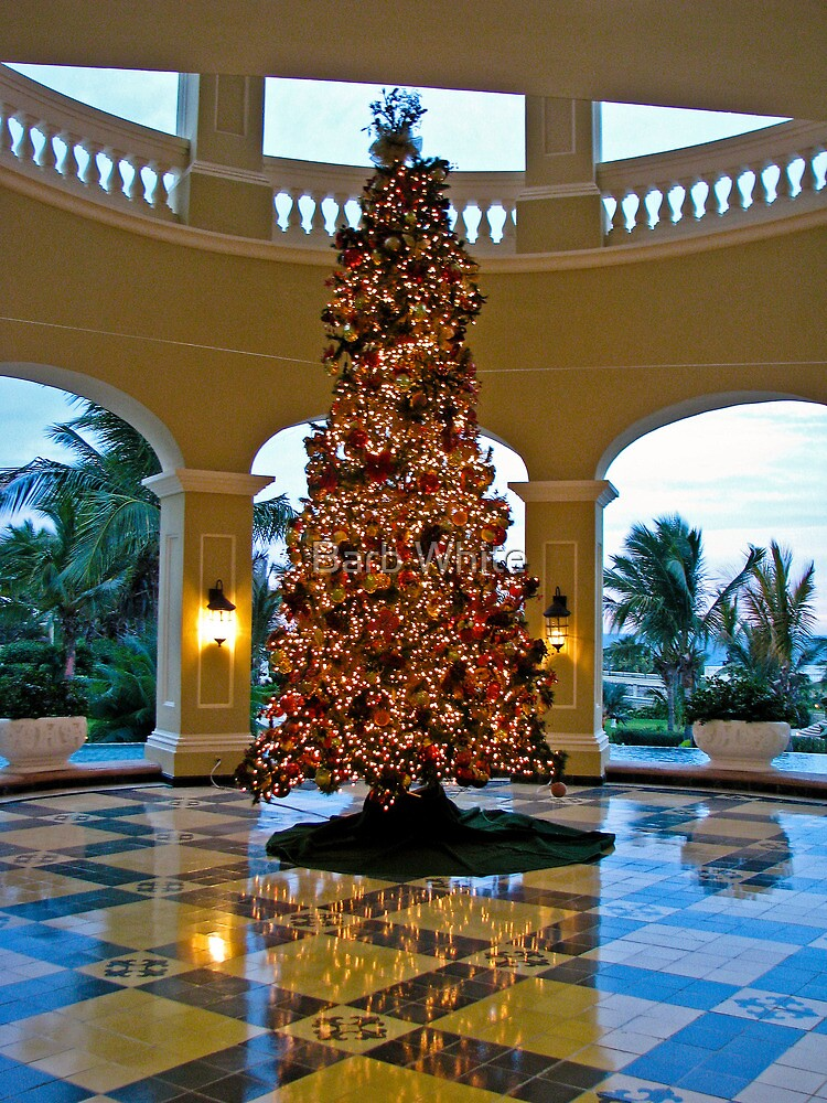 Christmas in Mazatlan by Barb White