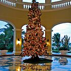 Christmas in Mazatlan by Barb White