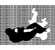 MMA Mixed Martial Arts Arm Bar  Photographic Print