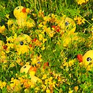 """Hide and Seek"" - rubber duckies hiding in the flowers by ArtThatSmiles"