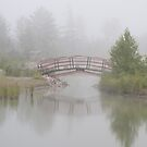 """Spanning Reflections"" - footbridge near Marquette, Michigan by ArtThatSmiles"