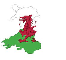 Wales Flag Photographic Print