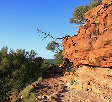 Kings Canyon Walk by Anthony Judd