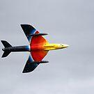 Hawker Hunter F58A by Wayne Gerard Trotman