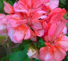 Pinkish Flower by imagerially
