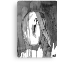 transient figure Canvas Print