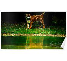 Crouching Tiger, Hidden Dragon. Poster