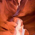 Within the Canyon Walls by Gregory Ballos | gregoryballosphoto.com