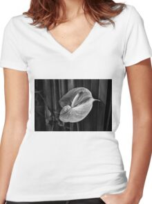 Beauty Women's Fitted V-Neck T-Shirt