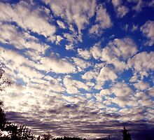 sky full of clouds by tego53