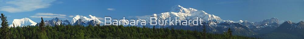 Denali in Panorama - Highest Mountain - USA by Barbara Burkhardt