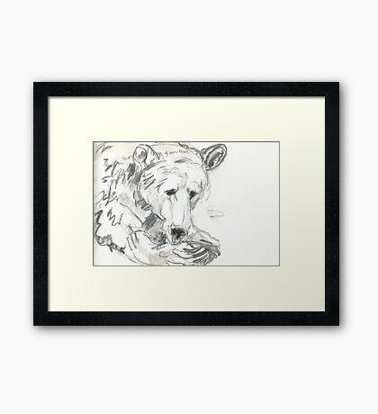 Roan 1985-2010 Framed Print