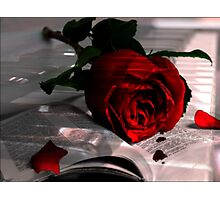 Every Rose Has It's Thorn Photographic Print