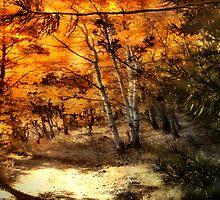 Aspens' Enchantment by Arla M. Ruggles