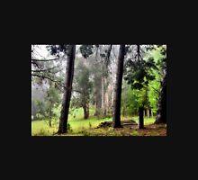 Tranquility - Mt Wilson NSW Australia Unisex T-Shirt
