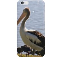 Pelican Profile  iPhone Case/Skin