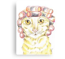 Purrfect   Pampering  Canvas Print