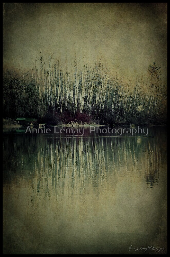 Crossing Over by Annie Lemay  Photography