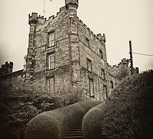 Lumley Castle: Our Wedding Venue by Ryan Davison Crisp