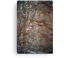 reticulated erosion pattern Canvas Print