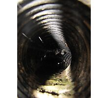 Deadly Pipe Surprise Photographic Print