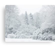 All is white... Canvas Print