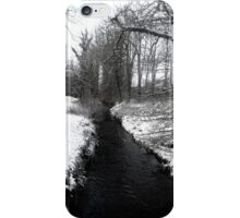 On a Snowy Day iPhone Case/Skin