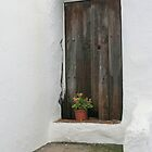 rustic door salares by Kent Tisher