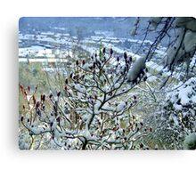 Winter Valley! Canvas Print