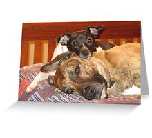 Rocky and Chance Greeting Card