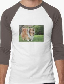 Sable Rough Collie Men's Baseball ¾ T-Shirt