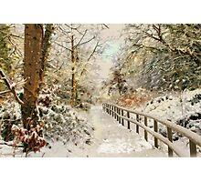 Winter delight Photographic Print