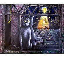 STARLIGHT STARBRIGHT CAT  Photographic Print