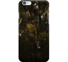 Afternoon Sun through Pine iPhone Case/Skin