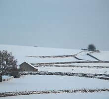 A Winter Scene in Yorkshire by YorkshireMonkey
