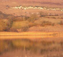Autumnal lake by wheelo