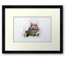 Extreme Survival Gnome:-) London, UK. Framed Print