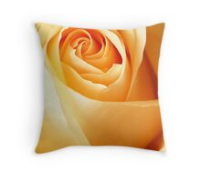 Rose in afternoon light Throw Pillow