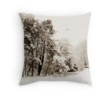 Sepia Storm Throw Pillow